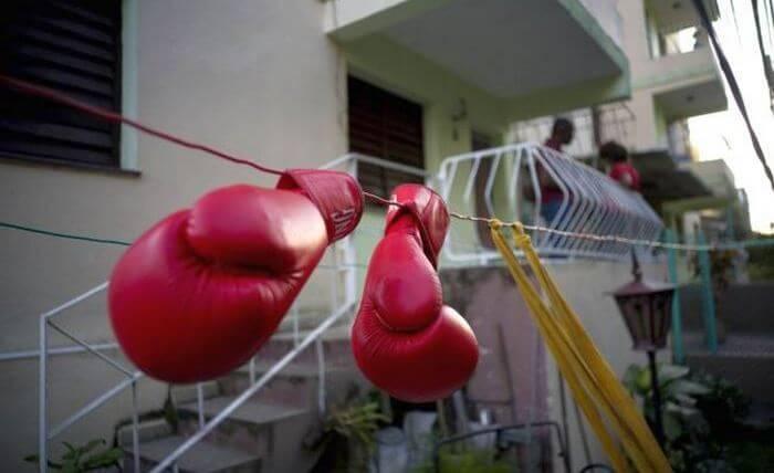 Сушка перчаток